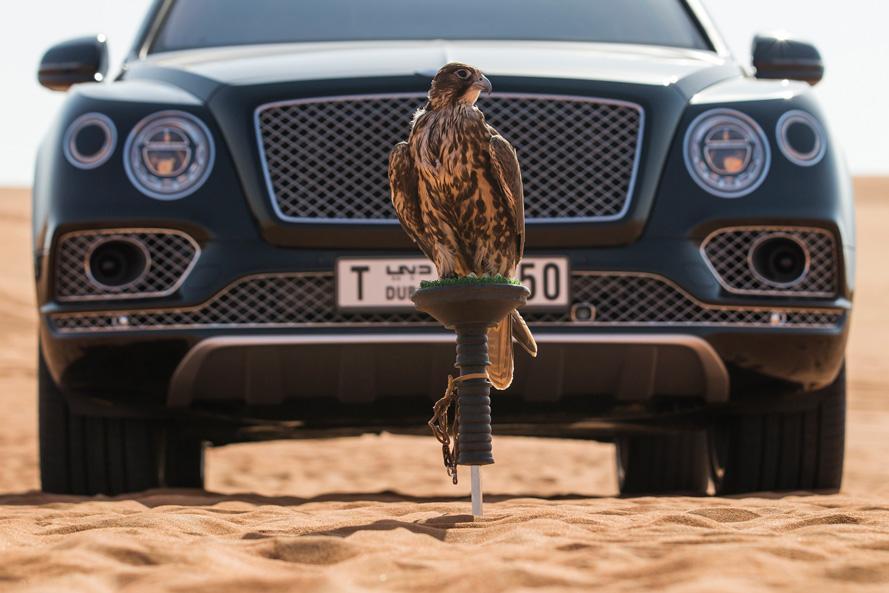 Bentley-Bentayga-Falconry-by-Mulliner-(18).jpg